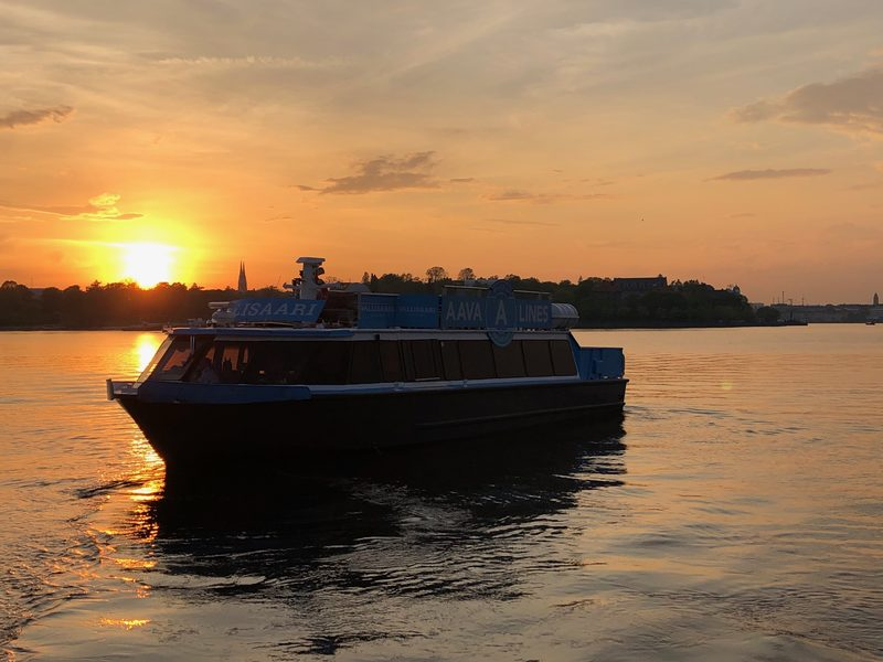 Dinner cruise with M/S Vallisaari for 1-60 people