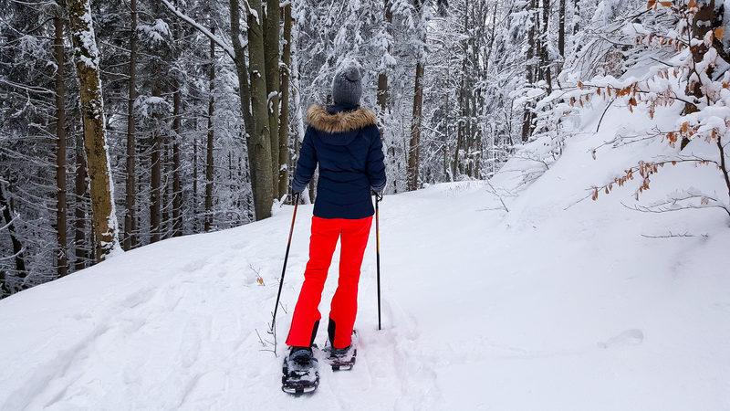 Прогулка на снегоступах по снежному лесу