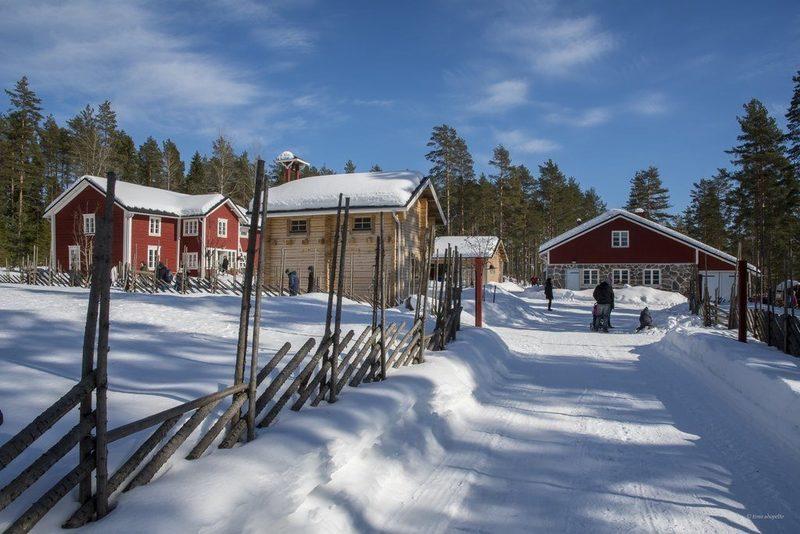 Парк дикой природы и Ферма