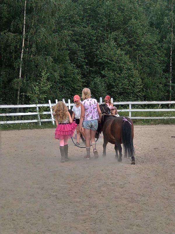 Hevostoiminta ryhmässä