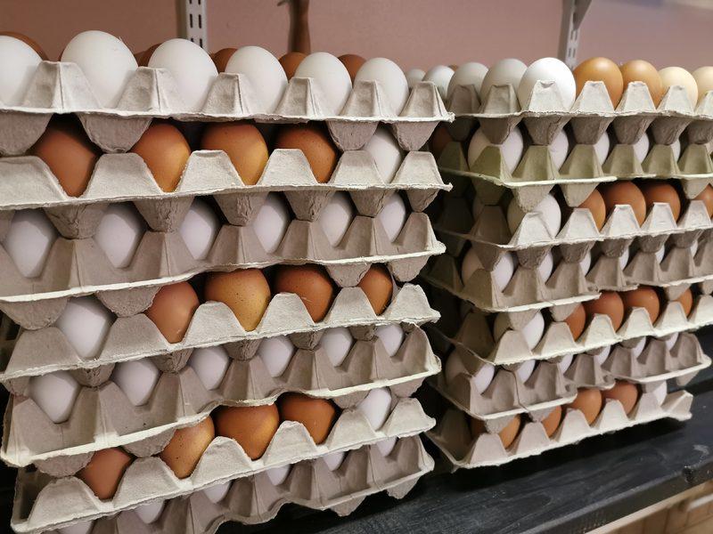 Kananmunat 30kpl