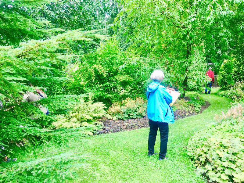 Arboretum Magnolia - Hyvinvointikierros