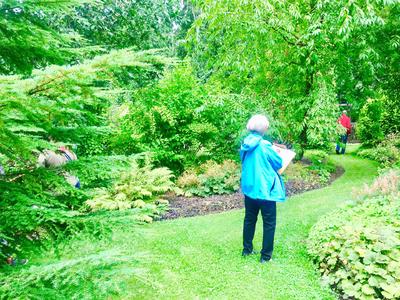 Arboretum Magnolia - Hyvinvointiretki - Kausilippu 2022