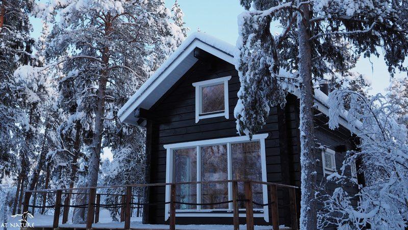 LapinTintti Eco-Cabin