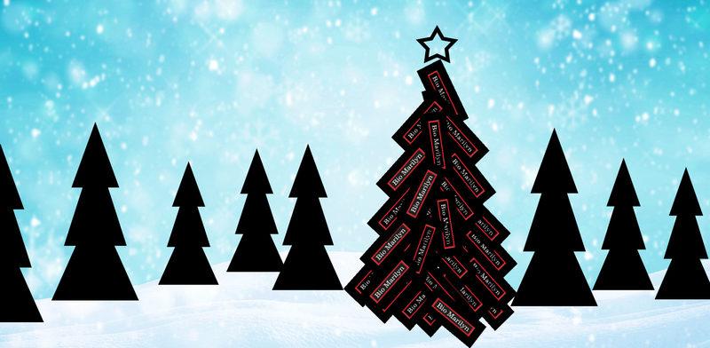 Joululippu