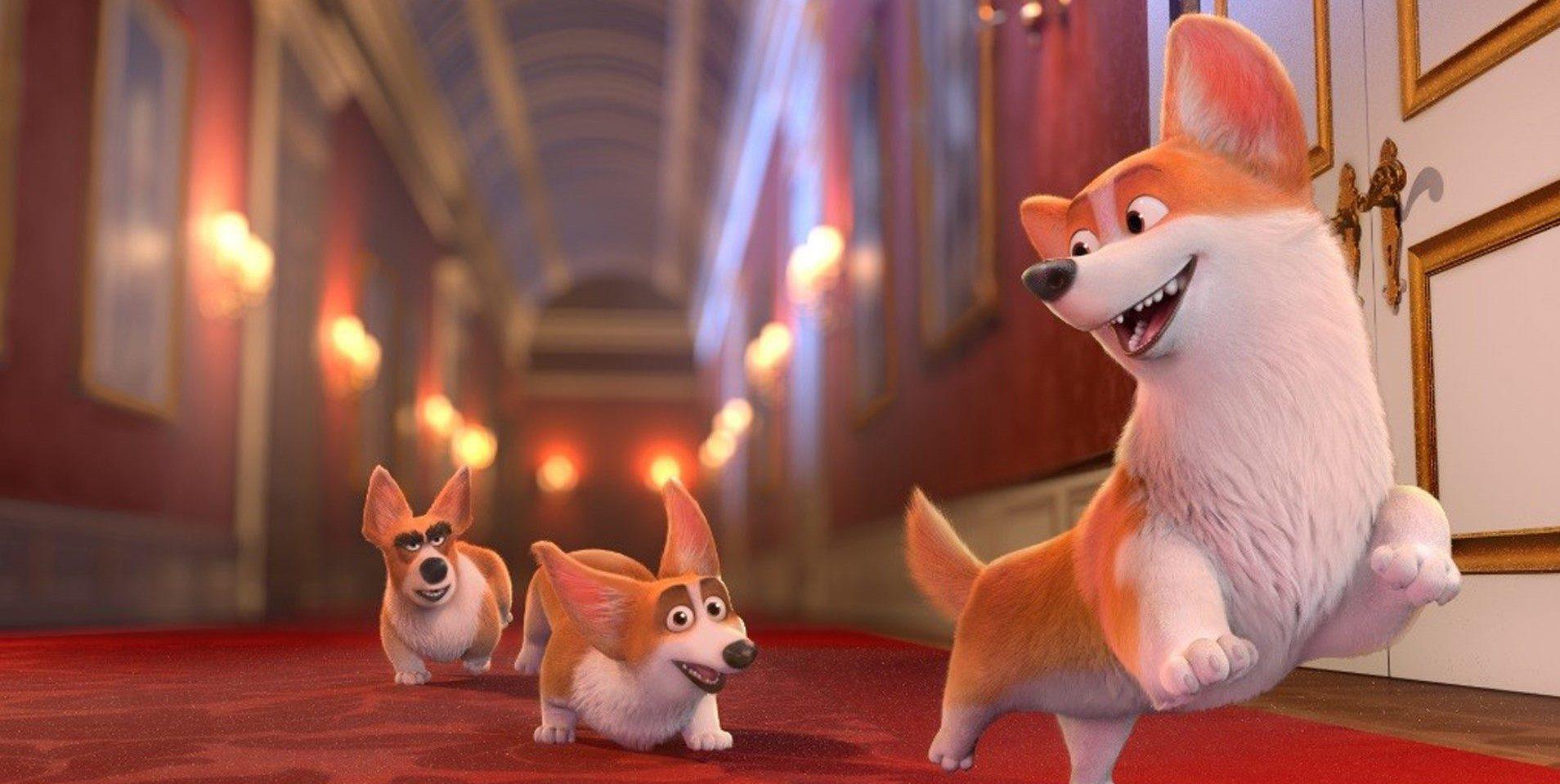 Corgi: Kuningattaren koiranpentu
