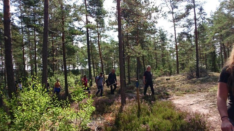 Metsäinen luontopolku Tentsilemäelle