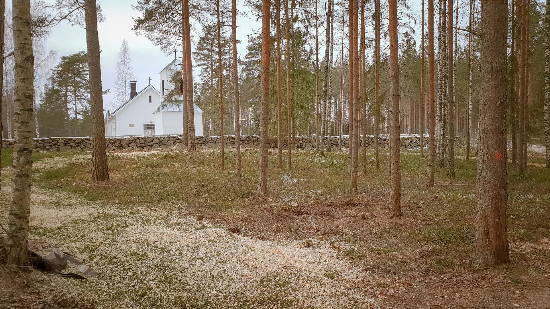 Siisti metsänhoito
