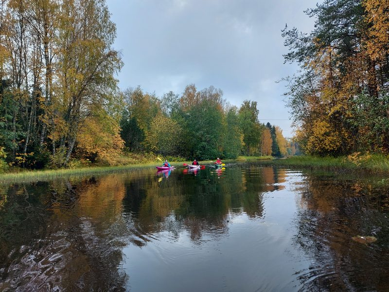 River Oulu island experience including outdoor meal