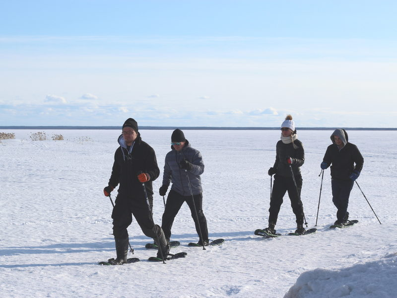 Snowshoeing safari in Hietasaari