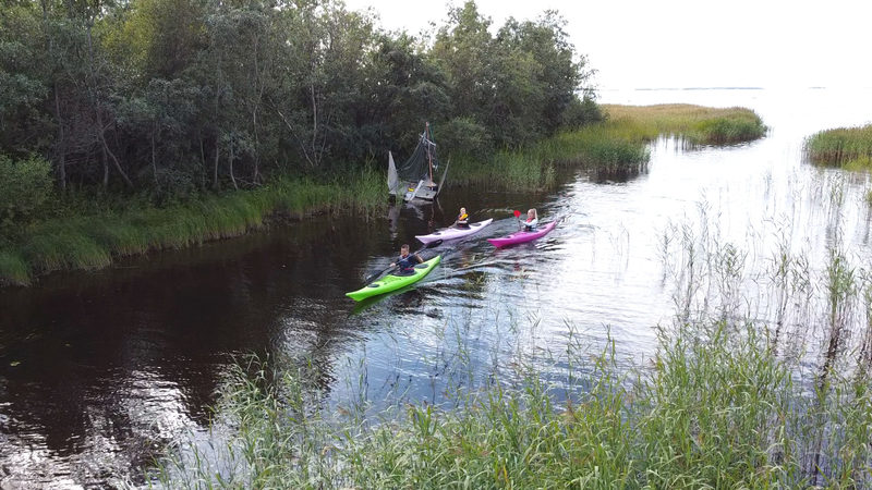 Kayaking safari to River Oulu delta