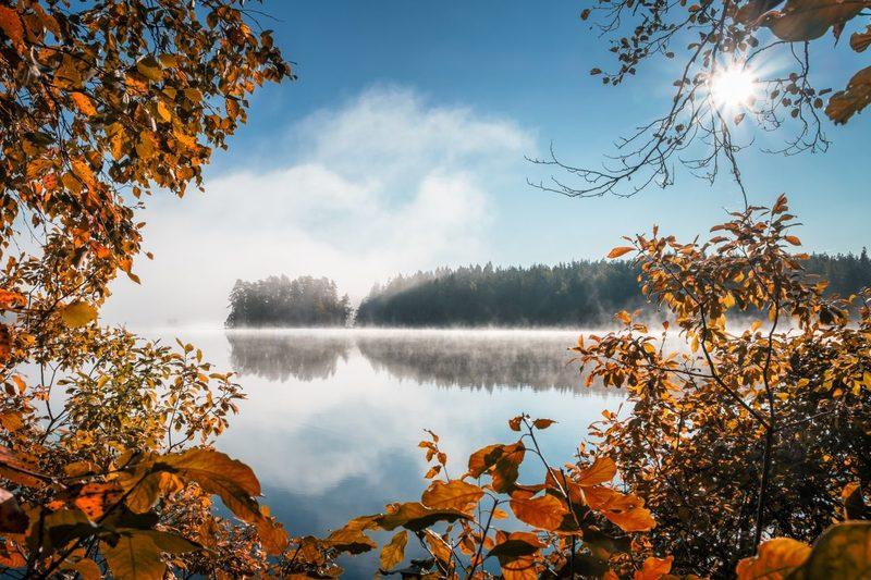 Liesjärvi - Liesjärvi