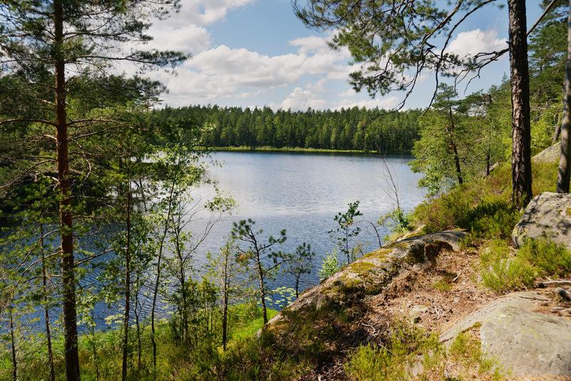 HELSINKI - Nuuksio National Park - Hike the Beautiful Forest Trails