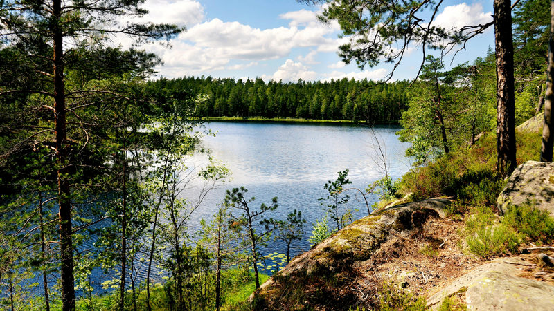 HELSINKI AREA - Hike the Beautiful Forest Trails