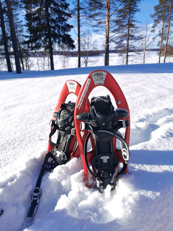 Snowshoeing TSL