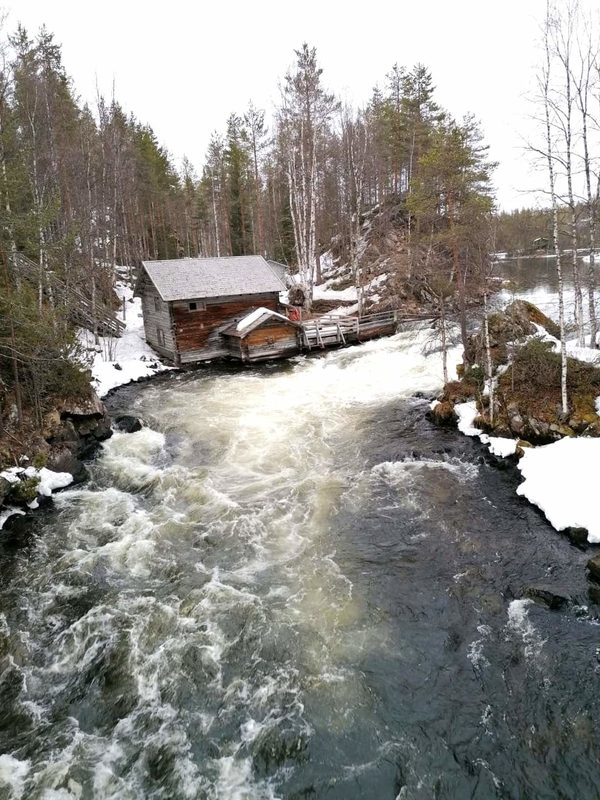 Oulanka National park (Bear's trail)