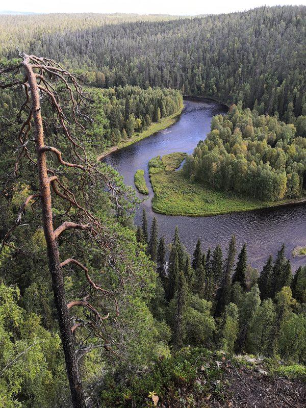 Pähkänänkallio (Oulanka,kitkajoki)