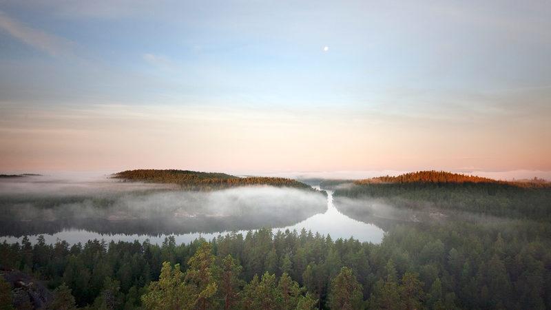 TERVARUMPU - Aitoa Metsän Elämää