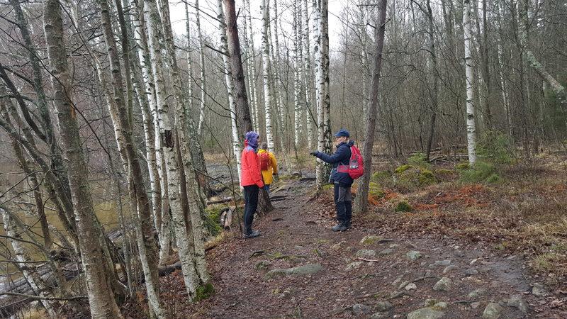 Opastettu luontoretki -Heinolan kansallisella kaupunkipuistoalueella