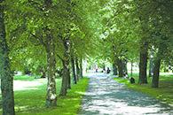 Heinola-tarinoita kävellen