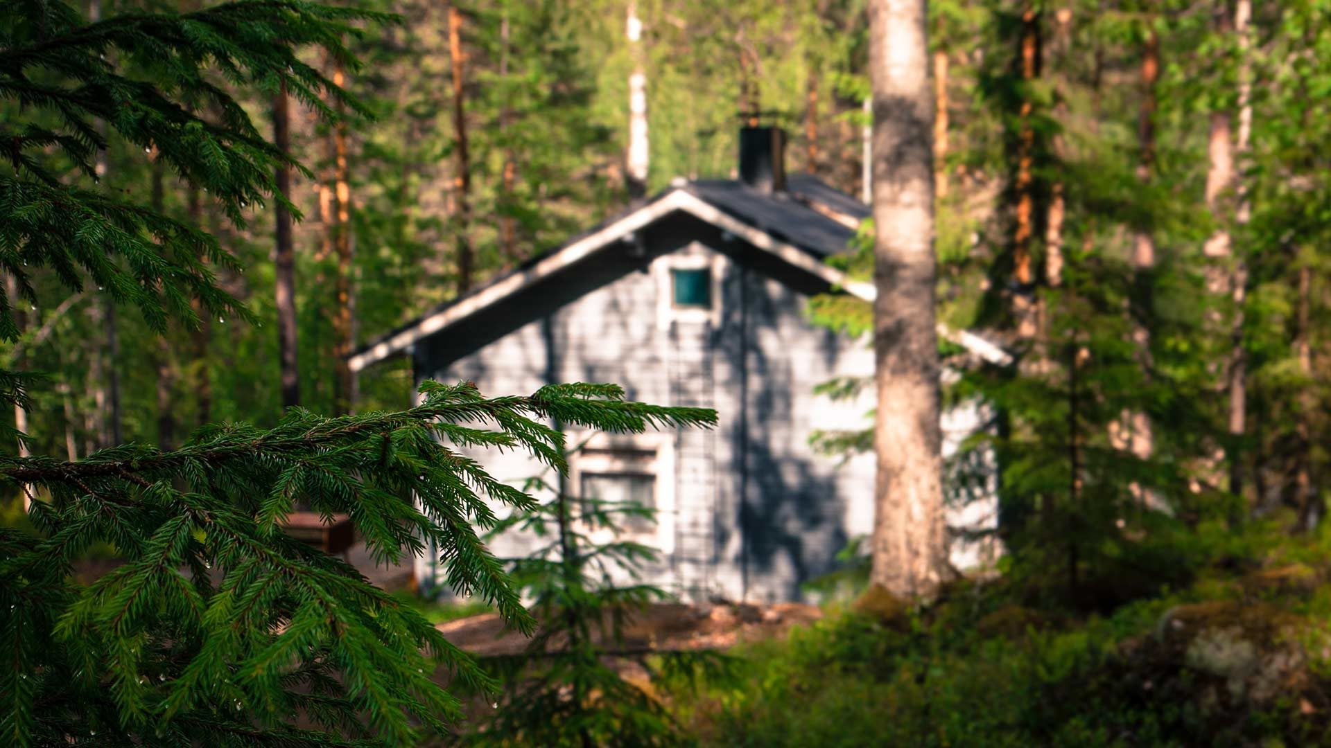 Accommodation in Repovesi National Park