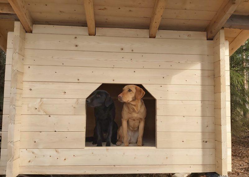 Koirille on oma laavu