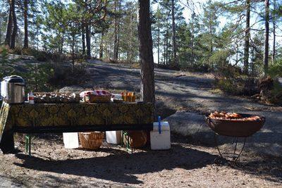 Honkalintu - Patikkaretki luontokeskus Haltian lähiluonto - Patikkaeväät Nuuksio