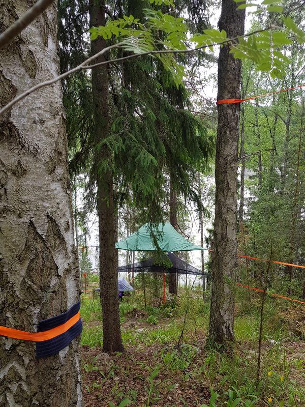 Tentsile Experience EcoCamp Nuuksio lahjakortti  - Näkymä  Nuuksio Tentsile
