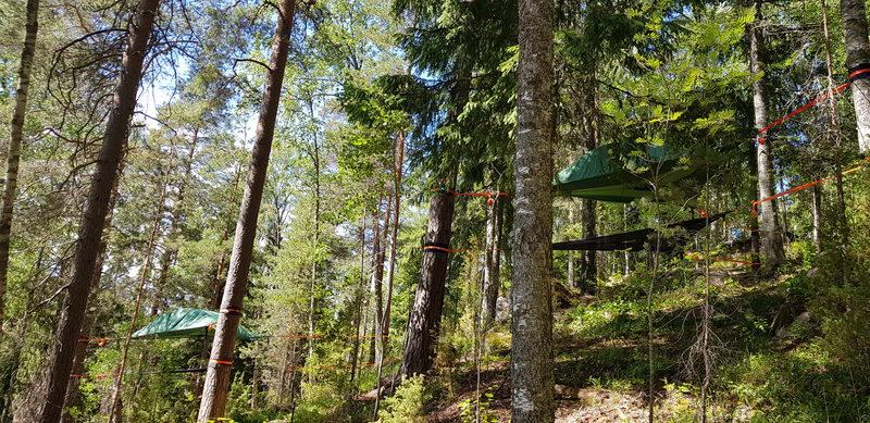 Tentsile Experience EcoCamp Nuuksio lahjakortti - Näkymä Tentsile Nuuksio