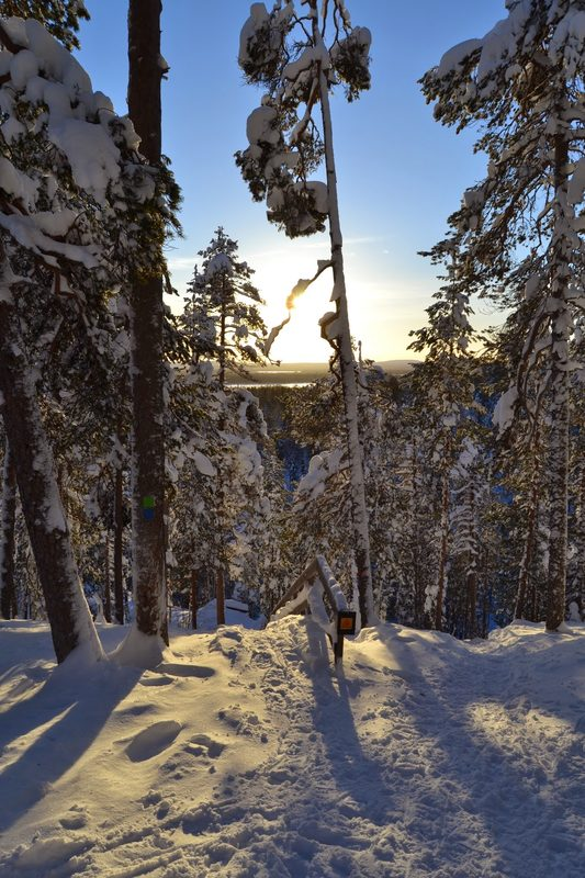 Winter fun Snowshoeing Trips