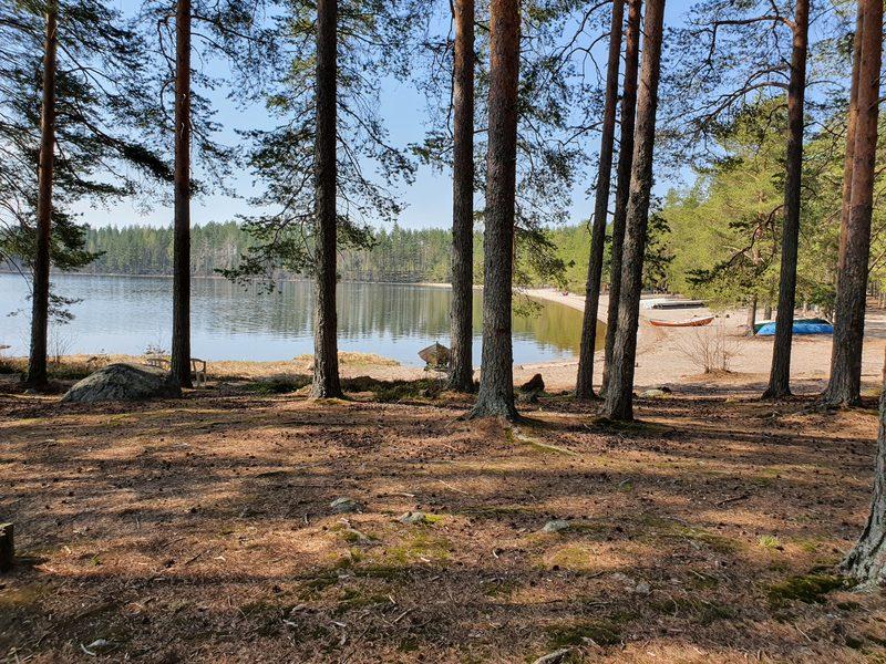 Tentsile Koli Camping Käränkkä varaa yösi puussa
