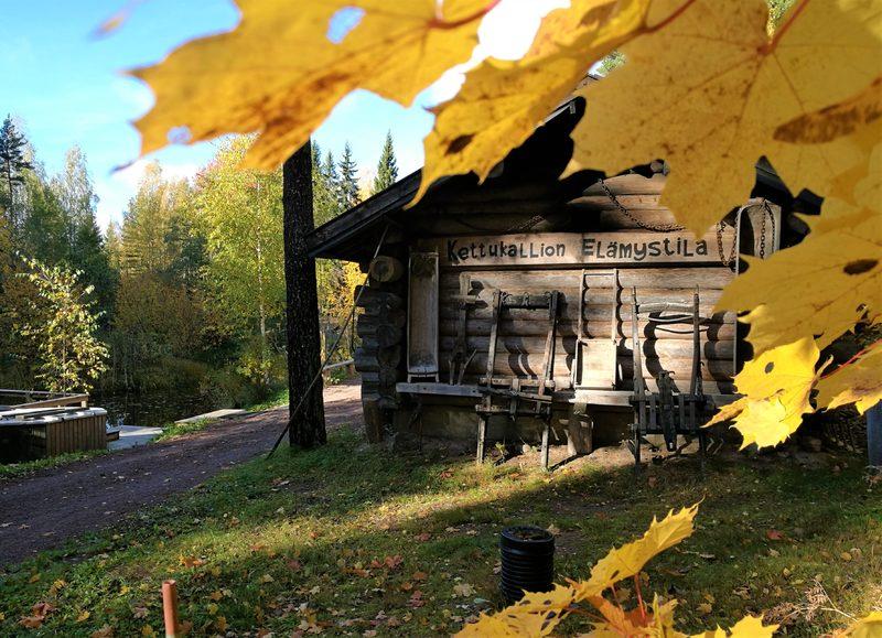 Savusaunapäivä ja metsäretki Kettukallion Elämystilalla 4.10.2020