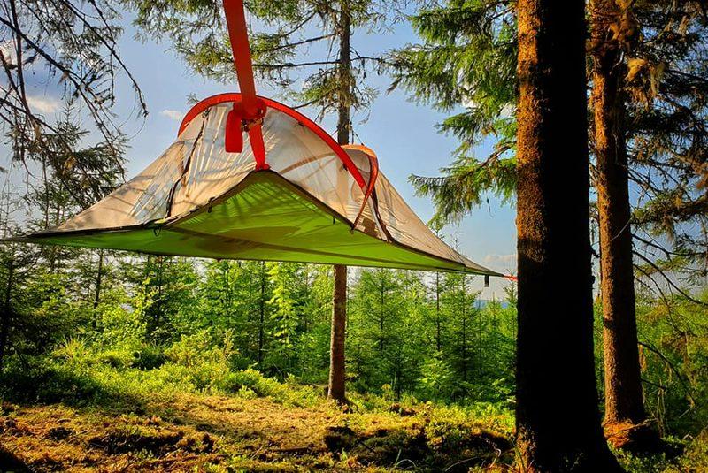 Tentsile Stingray -puumajoite 3 hengen teltta