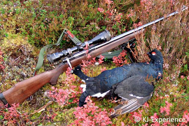 Metsästys Ruotsissa