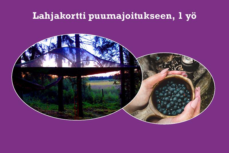 Lahjakortti Kommeen Kurjen puumajoitukseen 2 aik. ja 1-2 lasta, 1 yö