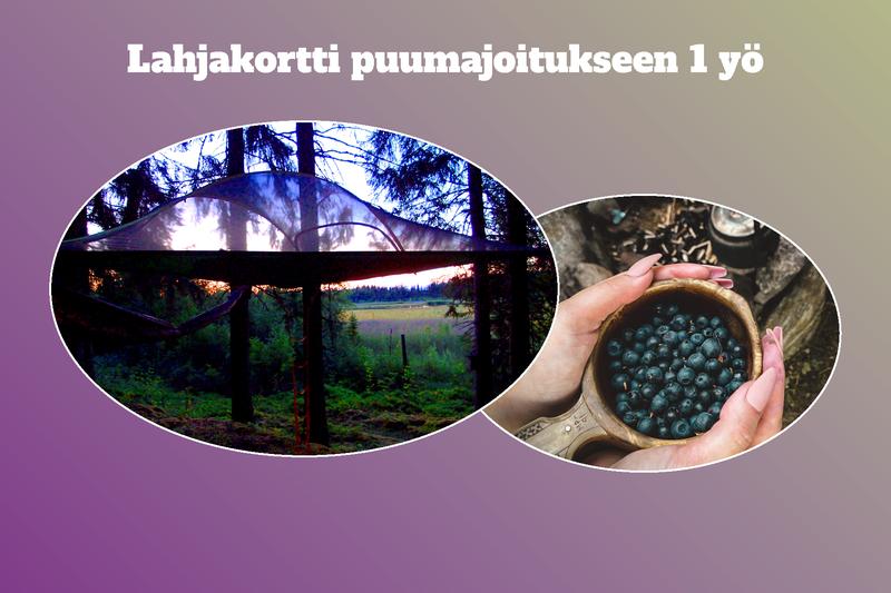 Lahjakortti Kommeen Kurjen puumajoitukseen 6 hlö tai 2 aik. + 5-6 lapselle, 1 yö