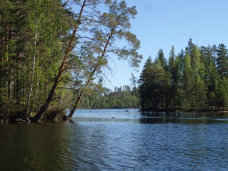 Veneretki- ja Metsämieli -paketti Verlassa
