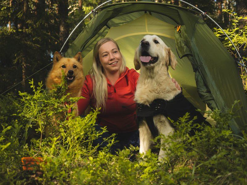 Koiran kanssa yön yli Nuuksion kansallispuistossa
