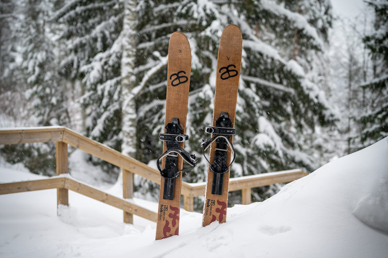 Back country skis (Altai)