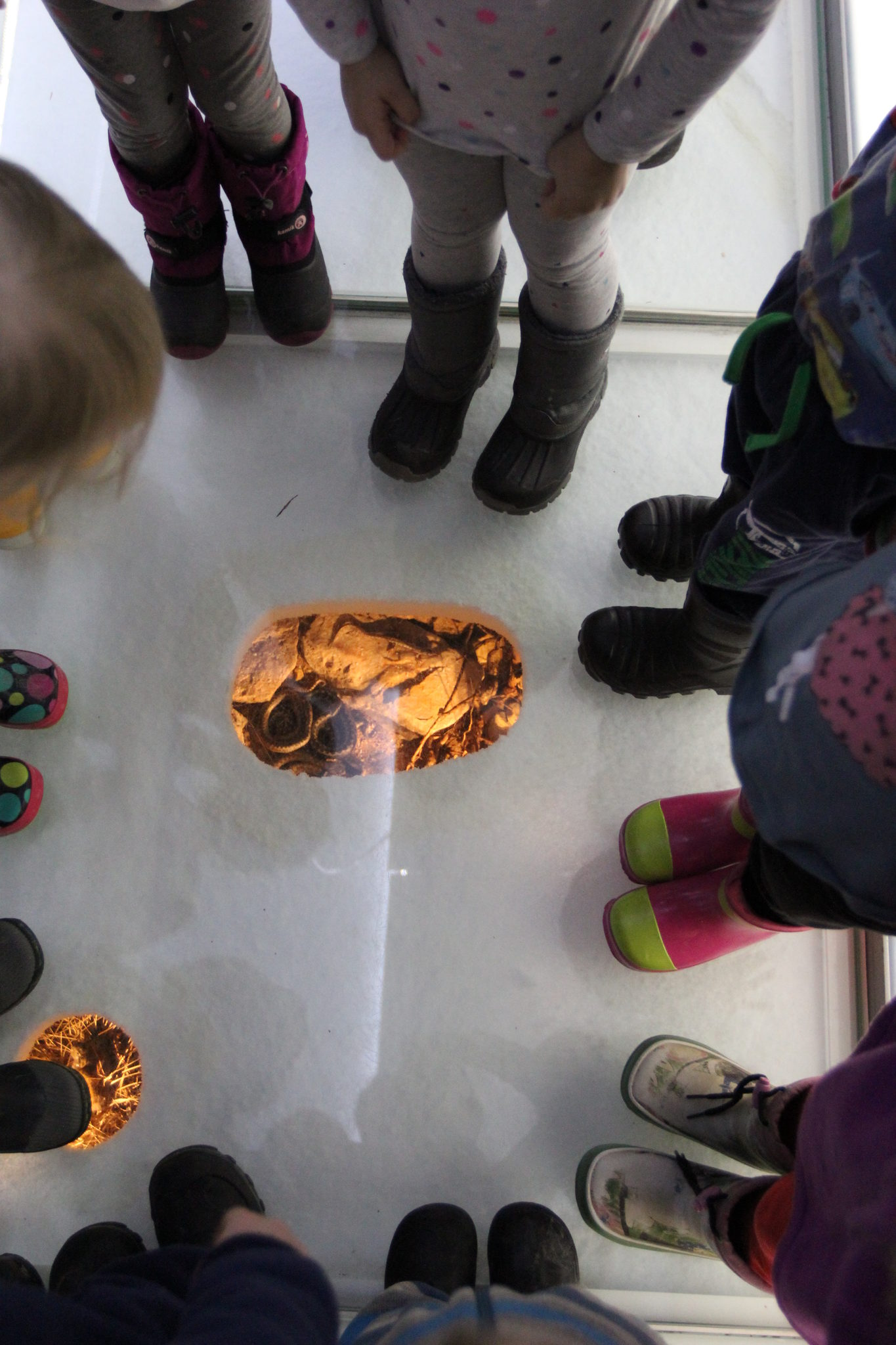 Jääkauden jälkiä (sisällä, alakouluille)