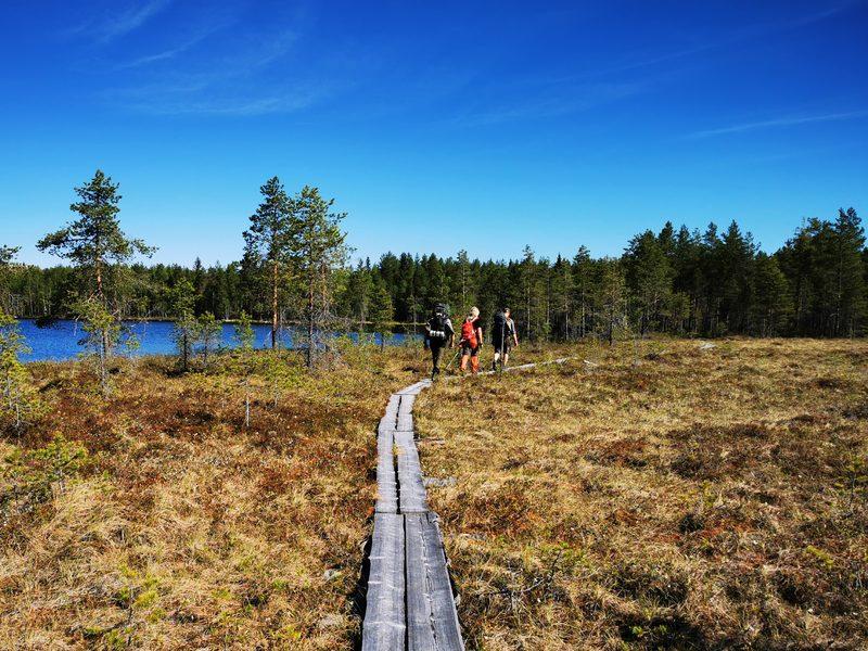 Vaellukselle Salamajärven Kansallispuistoon