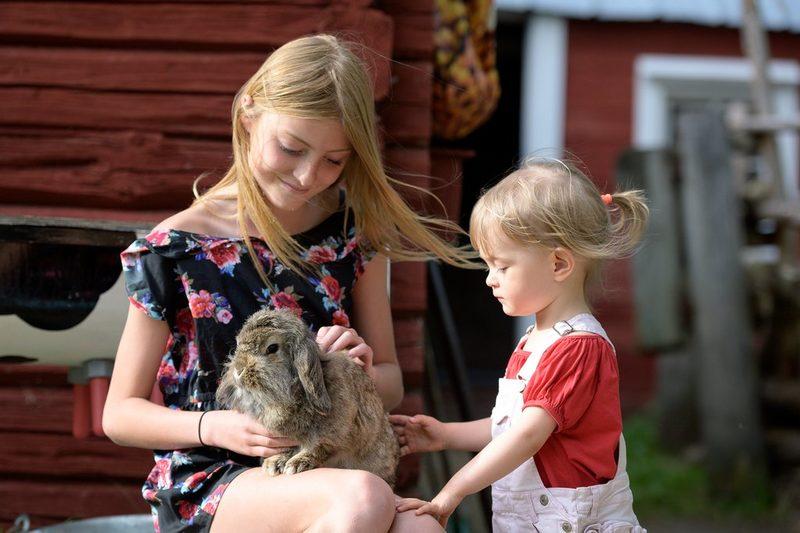 Lapset tutustuvat maatilan eläimiin majoituksen ohessa