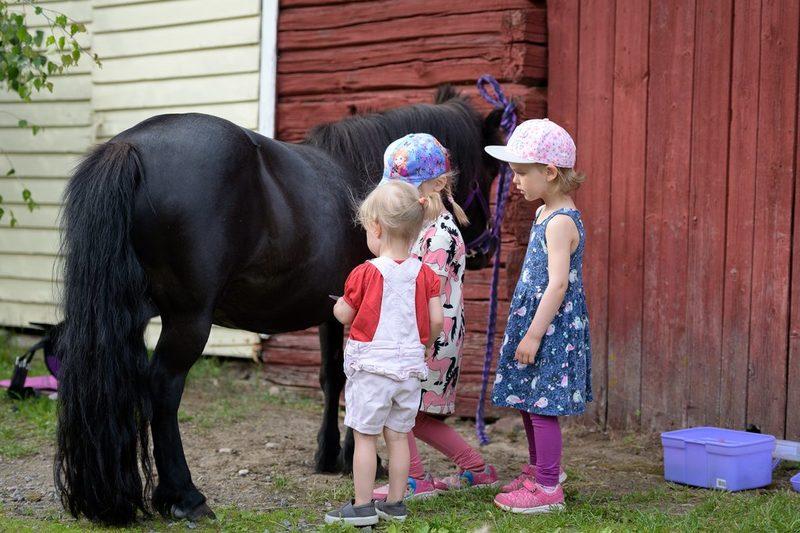 Lapset hoitavat ponia
