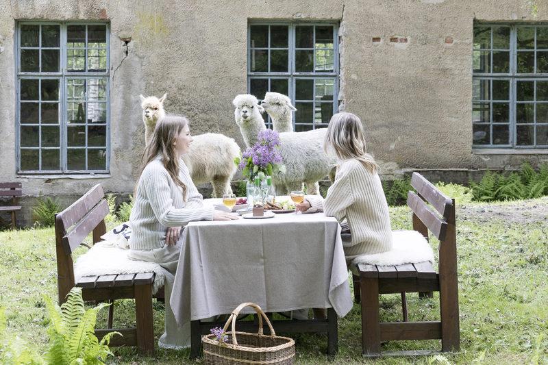 Alpakka piknik Mathildedalissa