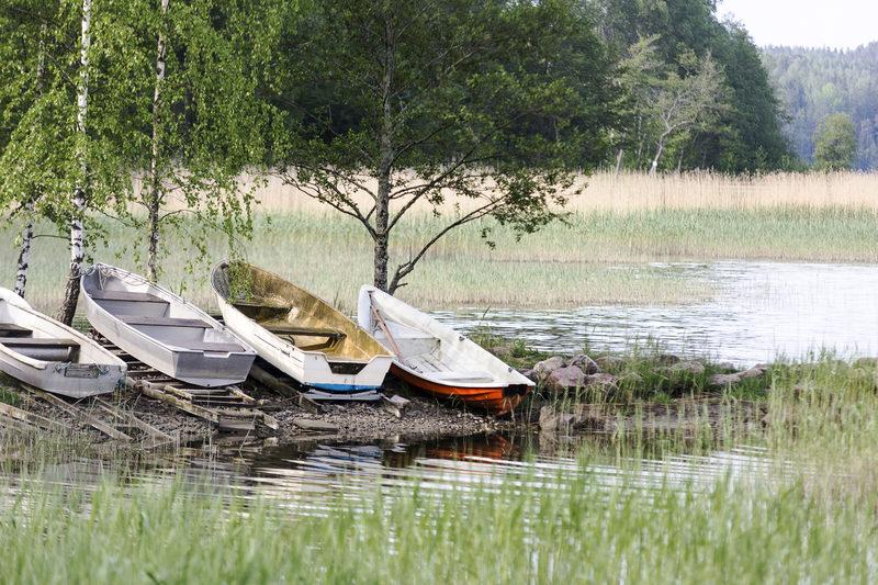 Mathildanjärvi - Noin 1km hotellistamme alkavat Teijon kansallispuiston reitit, esimerkiksi Mathildanjärven ympäri.