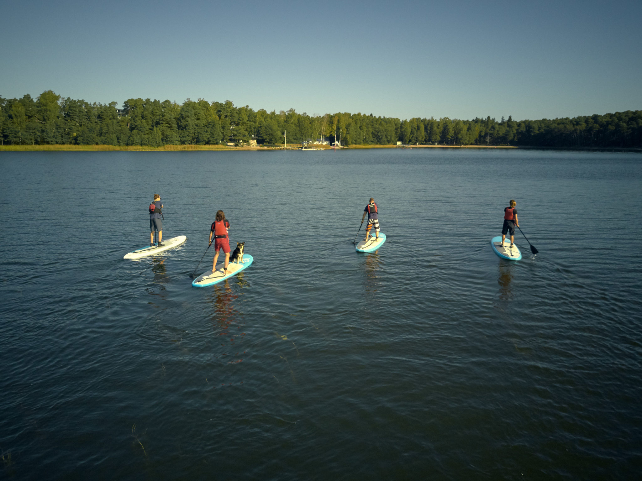 SUP-boards at Vuosaari Paddling Center