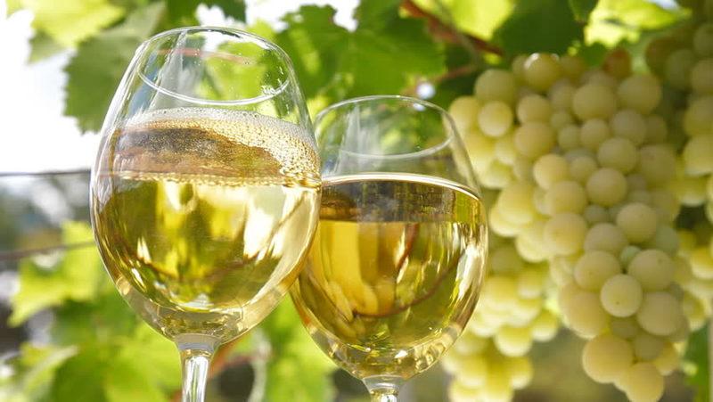 (7) Tasting-Epätavalliset viinimaat