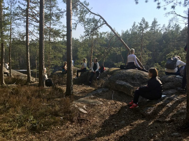 Forest mind walk in Nuuksio National Park
