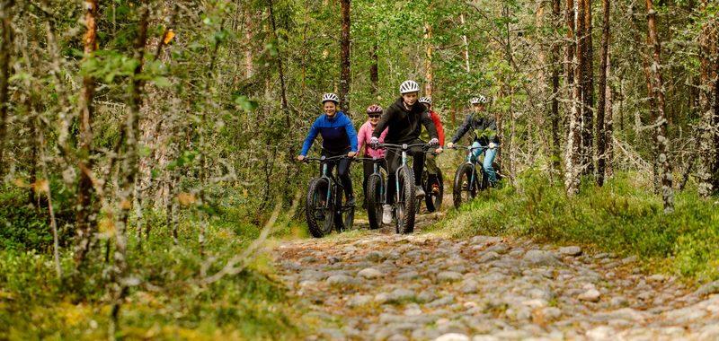 Maastopyöräily Teijon kansallispuistossa