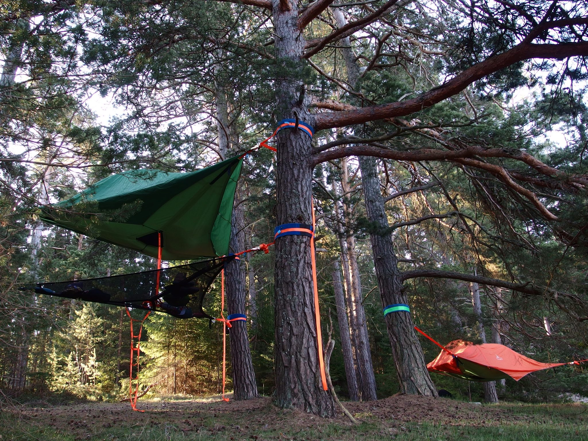 Tentsile products